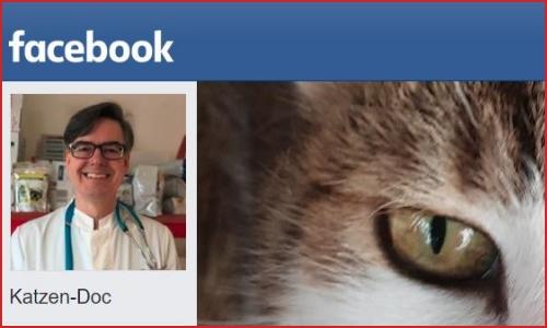 Social-Media DocGoy