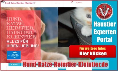Hund-Katze-Heimtier-Kleintier.de